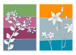 Blomsterkort | Illustrator, Photoshop